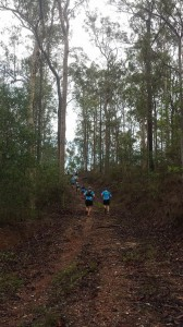 Trailblazers Beginners/recovery session @ Gully car park, Bunyaville | Everton Hills | Queensland | Australia